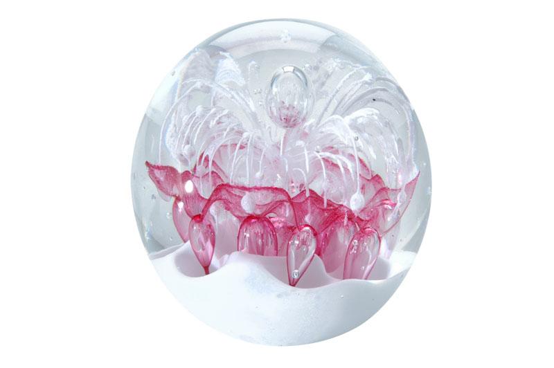 Sfera In Vetro Media Con Fiore Bianco E Rosa Su Sfondo Bianc